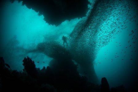 plongée sous marine guadeloupe