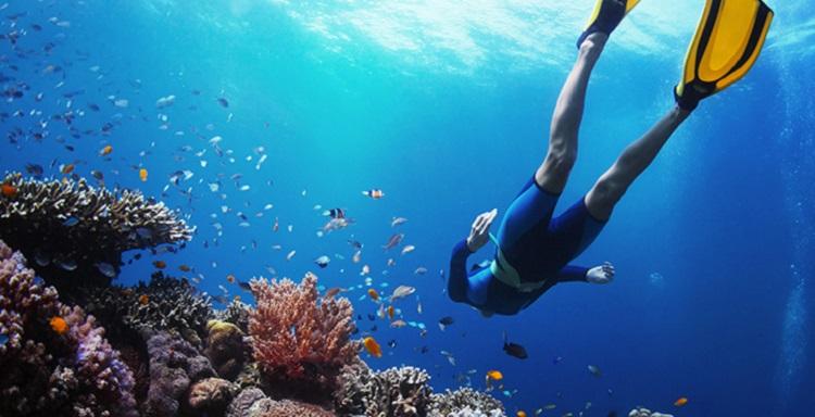 snorkeling-6