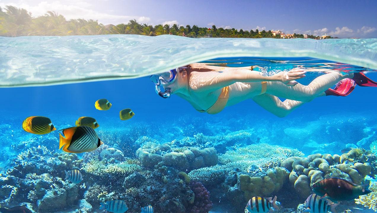 snorkeling-guadeloupe